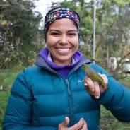 Getting to know New Zealand birds
