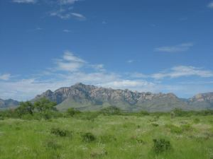 Not a bad place to be conducting field work (Chiricahua Mountains, Arizona)