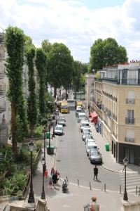 Maximising biodiversity in the streets of Paris