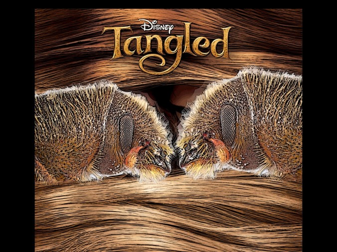 hylurgus-tangled