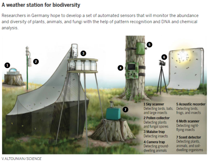 biodviersity weather station