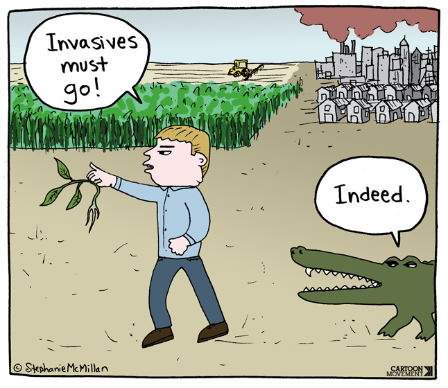 invasives_must_go__stephanie_mcmillan